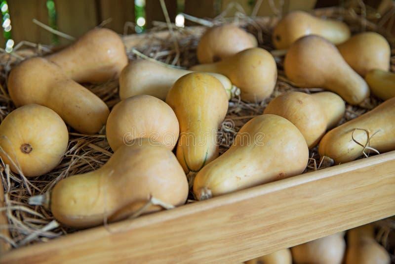 Frische gesunde Frucht im Bauernhof für Verkauf an einem Markt, Fokus selektiv stockbilder