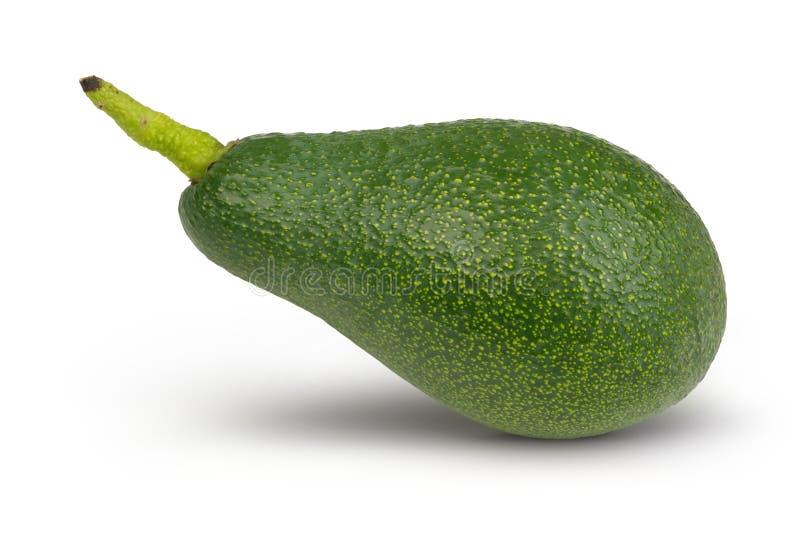 Frische grüne Avocado lokalisiert auf Weiß lizenzfreie stockfotografie