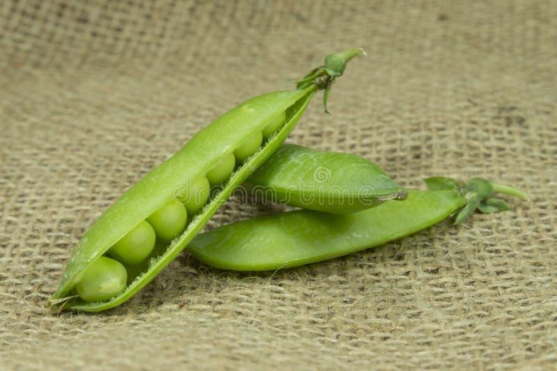 Frische grüne Erbsenhülsen auf braunem Jutefaserhintergrund lizenzfreie stockfotografie