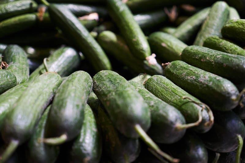 Frische grüne Gurken häufen Hintergrund, Nahaufnahme an landwirtschaft lizenzfreies stockbild