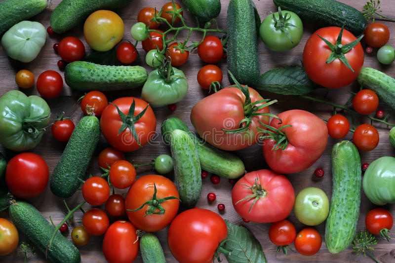Frische Gurken und Tomaten, Draufsicht Dunkel und schwermütig lizenzfreies stockfoto