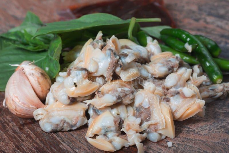 Frische Herzmuschel vom Meer von Thailand und von Basil Leaves lizenzfreie stockbilder