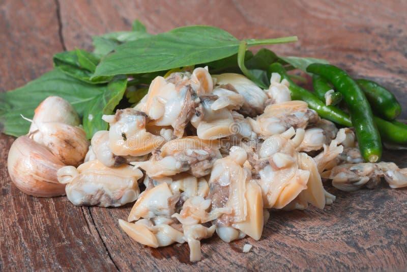 Frische Herzmuschel vom Meer von Thailand und von Basil Leaves lizenzfreie stockfotografie