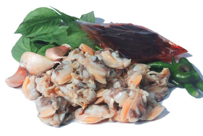 Frische Herzmuschel vom Meer von Thailand und von Basil Leaves lizenzfreie stockfotos