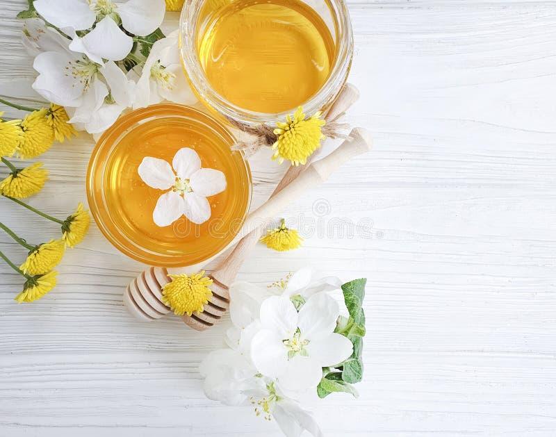 Frische Honignachtischblütenkirschorganische Ernteblüten auf grauem konkretem Hintergrund lizenzfreie stockfotos