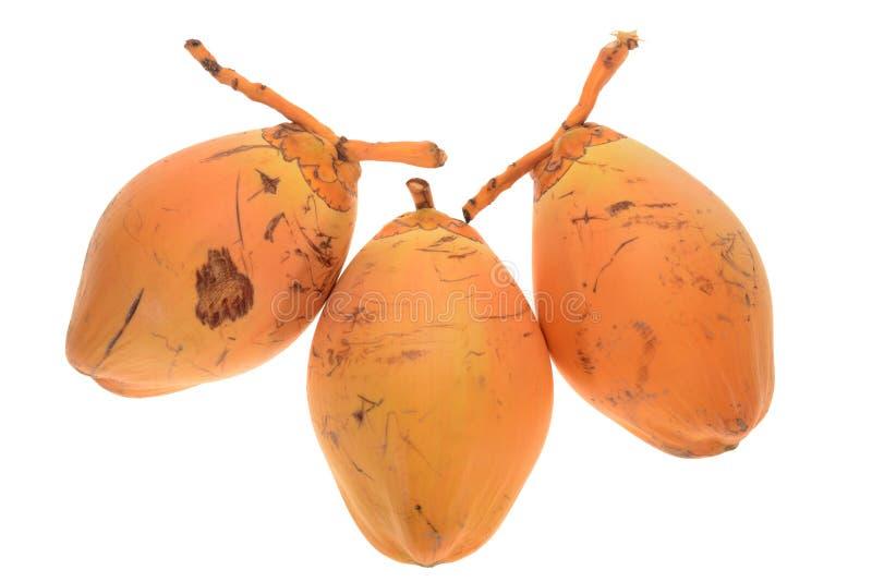 Frische junge Kokosnüsse