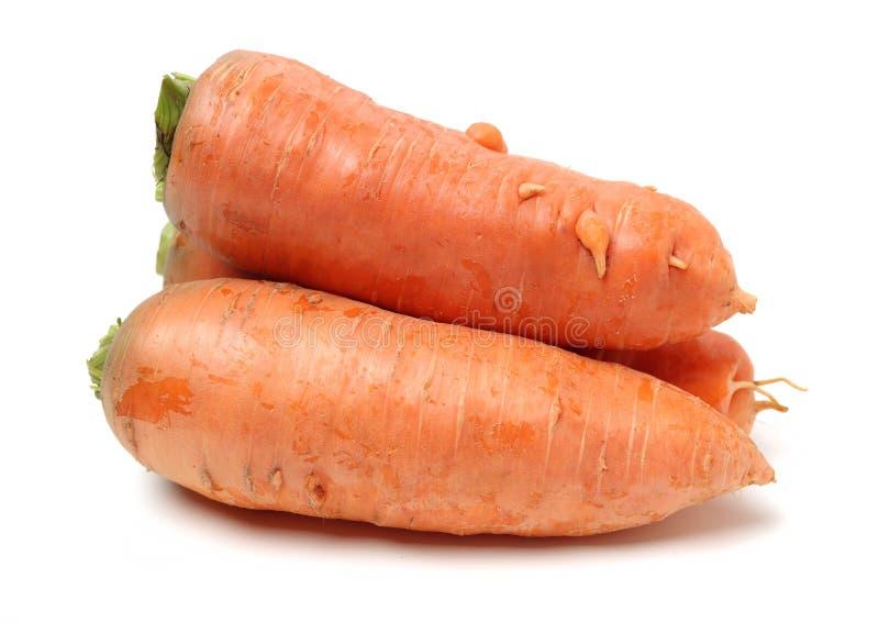 Frische Karotte stockfotos