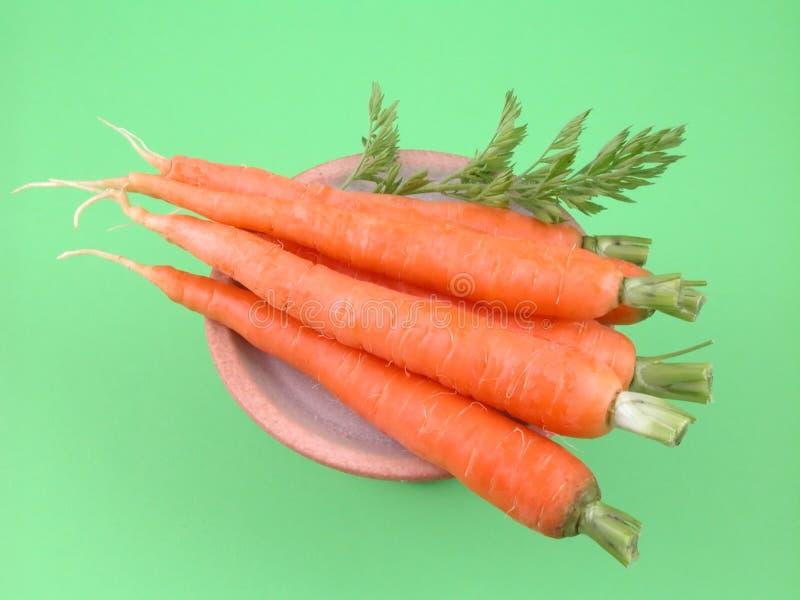 Frische Karotten stockbild