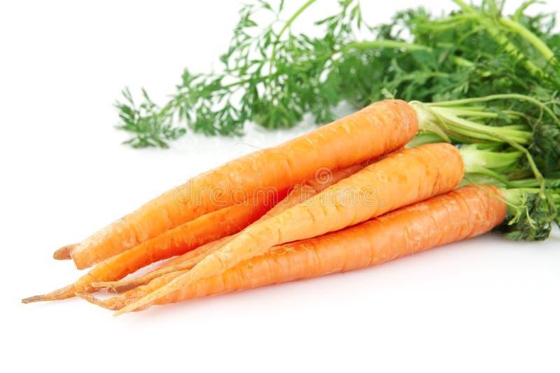 Frische Karotten lokalisiert auf weißem Hintergrund stockfotos