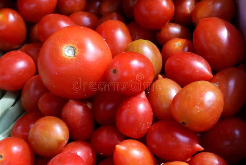 Frische kleine Tomaten im Markt lizenzfreie stockbilder