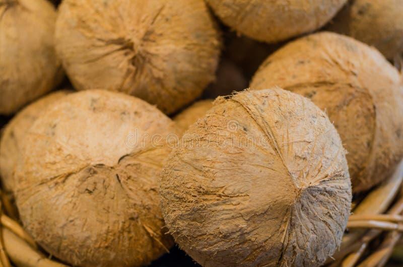 Frische Kokosnüsse auf Anzeige am Markt lizenzfreie stockbilder