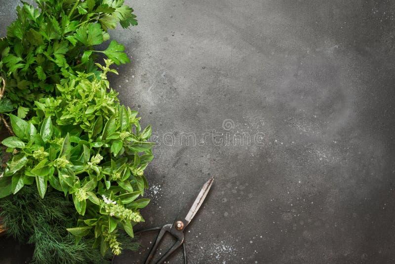 Frische Kräuter, Gewürz, Petersilie in der Holzkiste auf Weinleseschwarztabelle lizenzfreie stockbilder