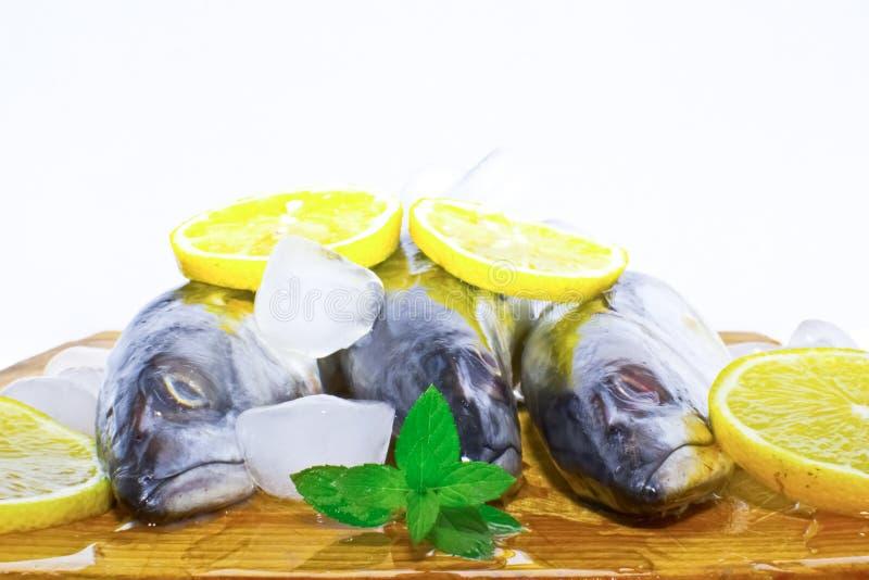 Download Frische Makrelefische Auf Eis Stockbild - Bild von petersilie, angeln: 26357543