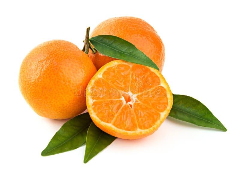 Frische Mandarinen mit Blättern lizenzfreie stockfotografie