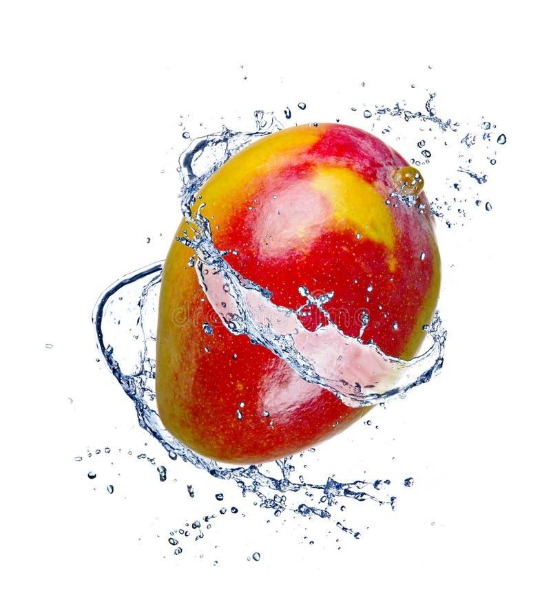 Frische Mangofrucht stockfotografie