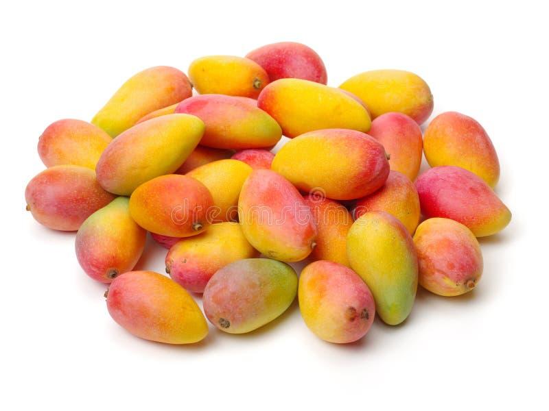 Frische Mangofruchtfrüchte stockbild