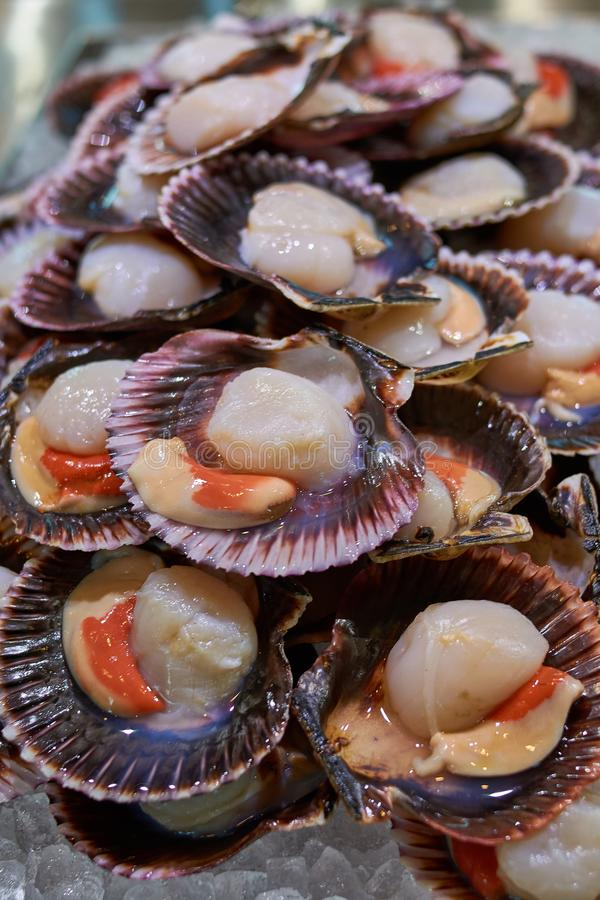 Frische Meeresfrüchtegarnelen, -garnelen und -krake auf Kompensationsgeschäft in einem asiatischen Restaurant stockfotos