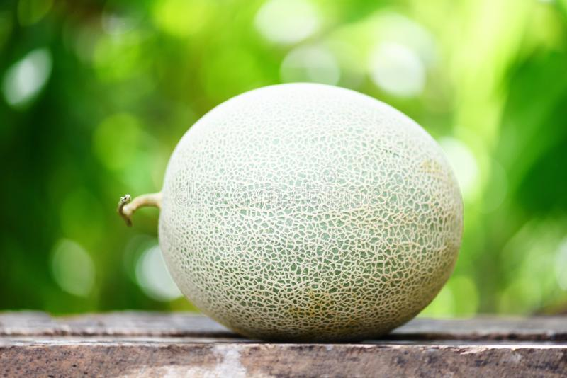 Frische Melonen oder grüne Melonenkantalupe auf dem Holztisch und der Natur stockfotografie