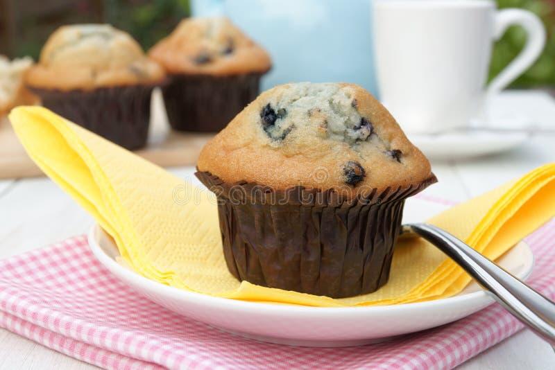 Frische Muffins stockbilder