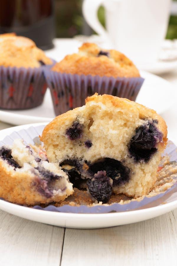 Frische Muffins lizenzfreies stockbild