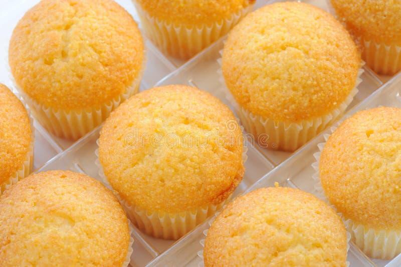 Frische Muffins stockfoto