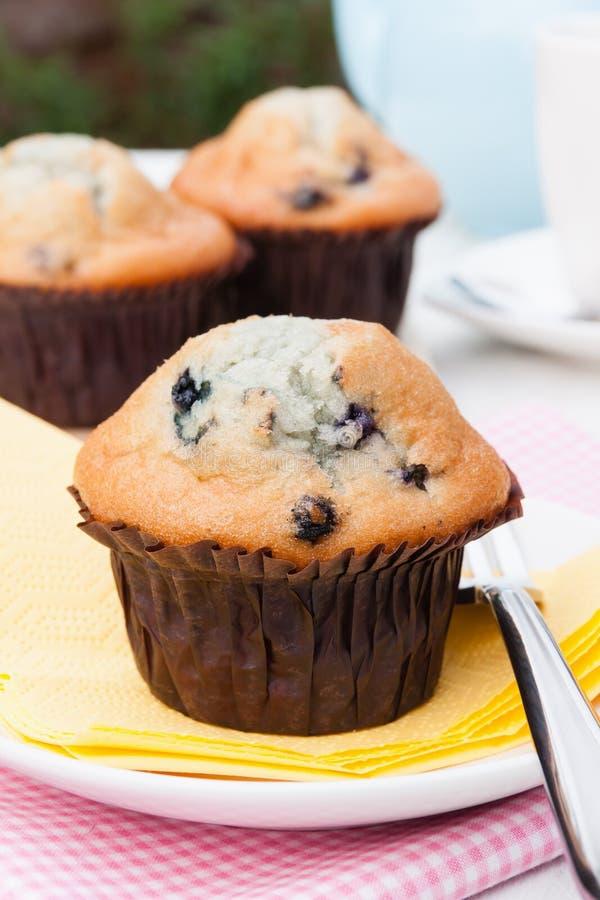 Frische Muffins stockbild