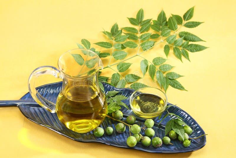 Frische Neem-Blätter mit Öl stockfoto
