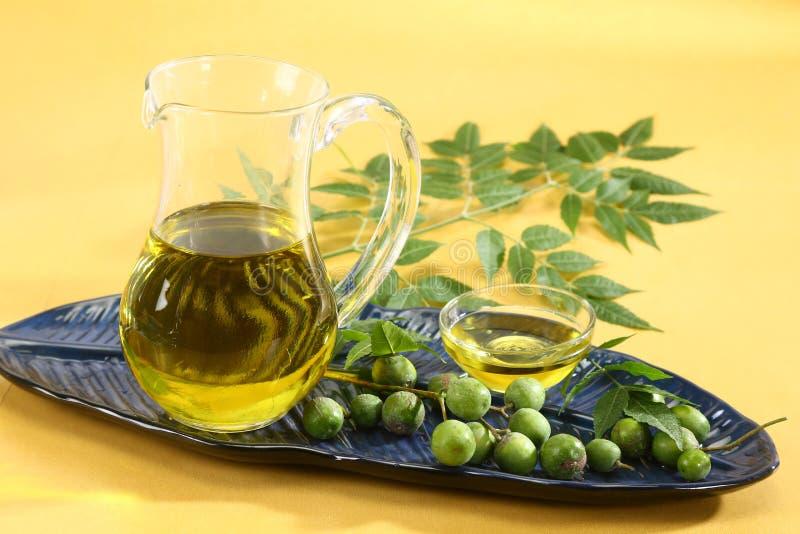 Frische Neem-Blätter mit Öl lizenzfreie stockfotografie