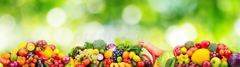 Frische Obst und Gemüse des Panoramas auf Grün stockfotos