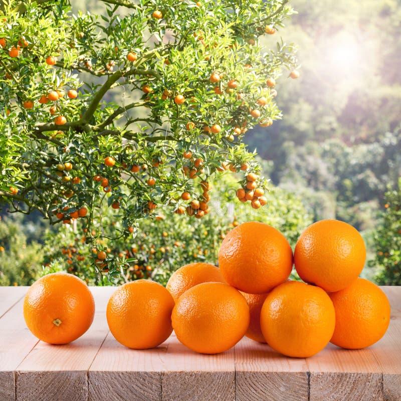Frische Orange auf hölzerner Tabelle im Garten lizenzfreies stockfoto