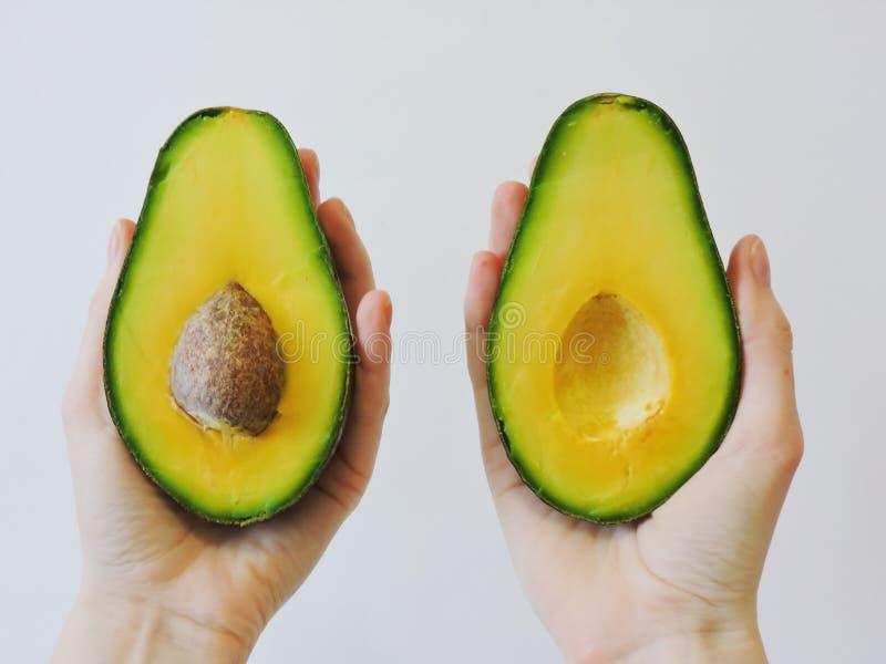 Frische organische Avocado lokalisiert auf weißem Hintergrund Geschnittene Avocado lokalisiert Tropischer abstrakter Hintergrund  stockbild
