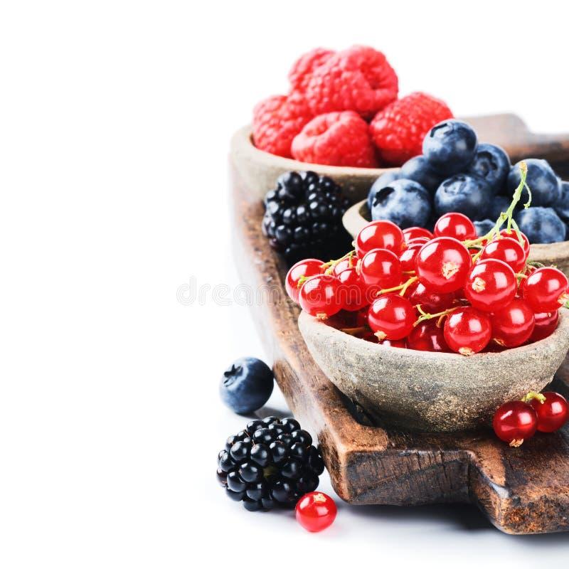Frische organische Beeren lizenzfreies stockbild