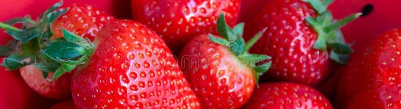 Frische organische Erdbeeren im roten Schüsselhintergrund lizenzfreies stockfoto
