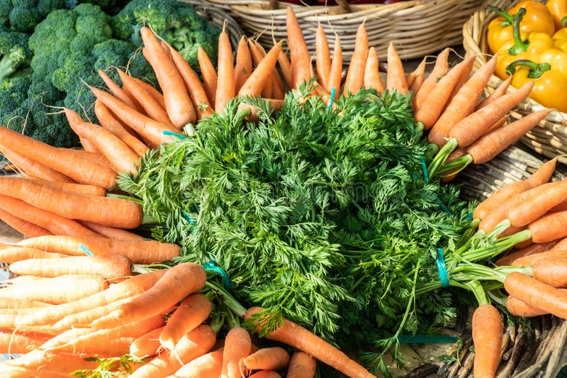 Frische organische Karotten für Verkauf auf Landwirtmarkt lizenzfreie stockfotos