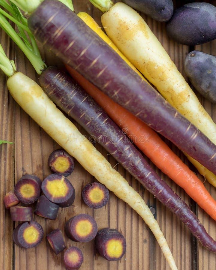 Frische organische Regenbogenkarotten und purpurrote Kartoffeln lizenzfreies stockfoto