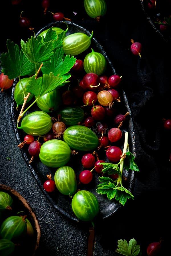 Frische, organische Stachelbeere in der keramischen Schüssel lizenzfreies stockbild