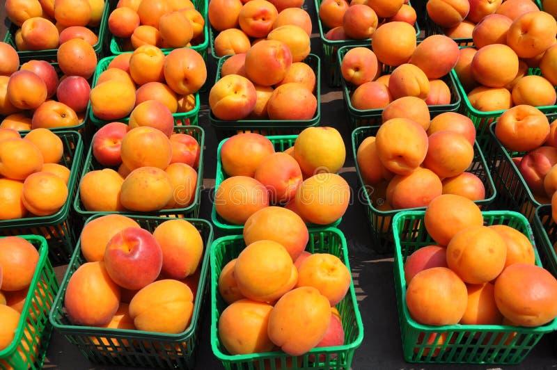 Frische Pfirsiche stockbilder