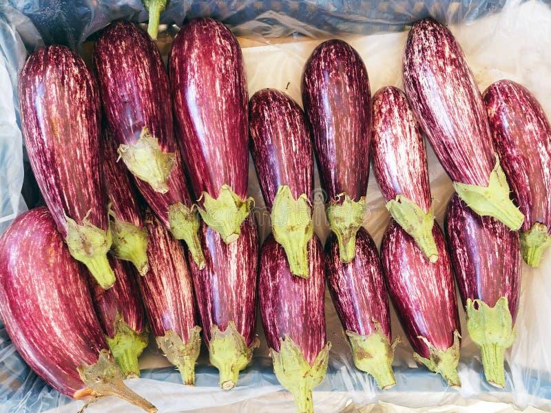 Frische purpurrote gestreifte Auberginen im Obst- und GemüseGeschäft stockfoto