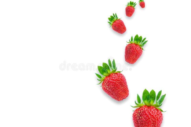Frische reife Erdbeere auf wei?em Hintergrund E stockbild