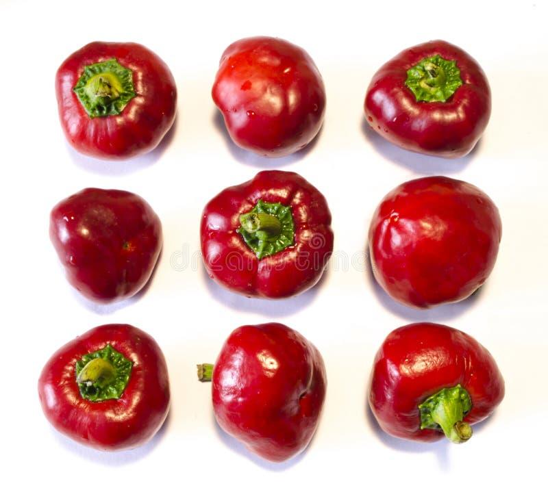 Frische reife rote Pfeffer, einheimische Herbsternte - auf einem weißen Hintergrund stockfotos