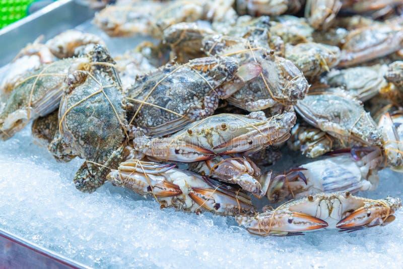 Frische rohe blaue Schwimmkrabbe auf Eis für Verkauf am Meeresfrüchtemarkt lizenzfreie stockbilder