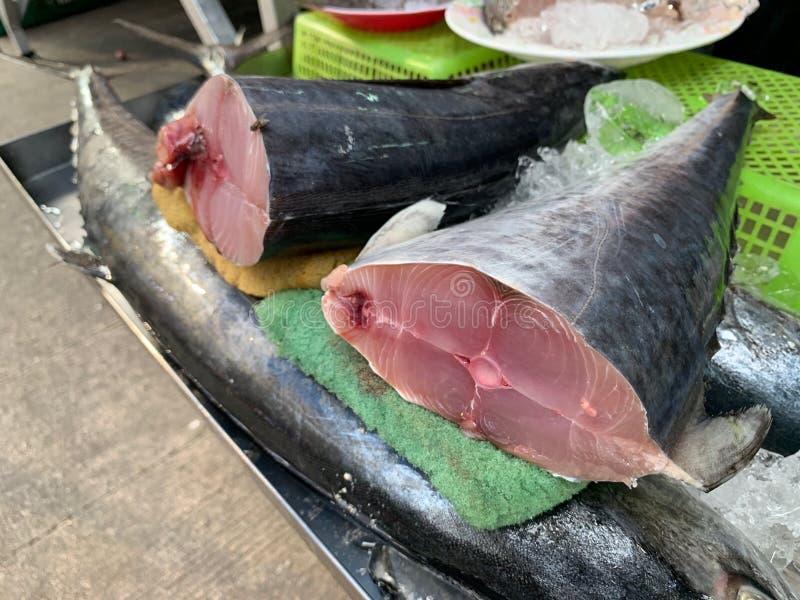 Frische rohe Indo Pazifik Königmakrelen geschnitten in Stücke, beschmutzte Makrelen, Serrafische auf dem Fischmarkt lizenzfreie stockfotos