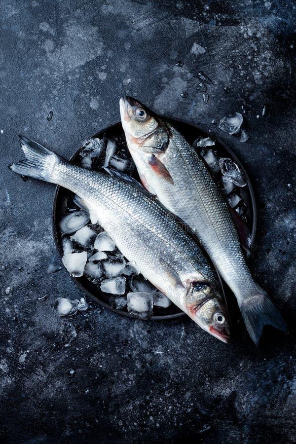 Frische rohe Seebarschfische auf schwarzem Steinhintergrund mit Eis Kulinarischer Meerestierhintergrund stockfotografie