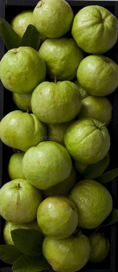 Frische rosa Guaven stockfoto