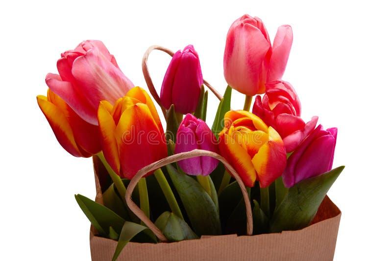 Frische rosa Tulpenblumen in der Papiertüte lokalisiert auf Weiß lizenzfreie stockfotos