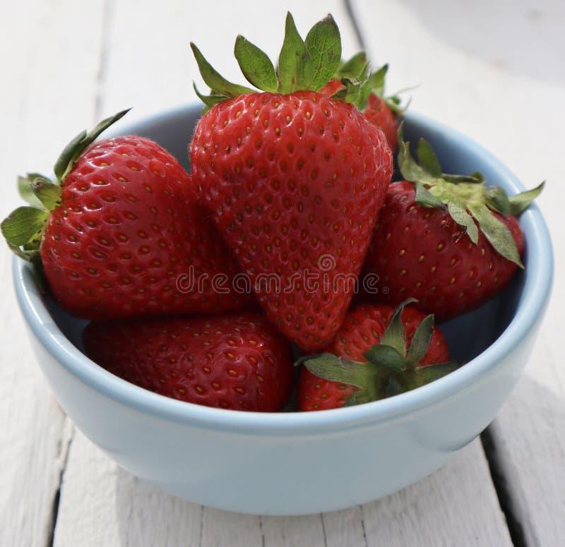 Frische rote saftige Erdbeeren schließen oben in der blauen Schüssel auf weißem Hintergrund lizenzfreie stockbilder