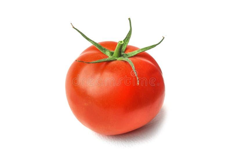 Frische rote Tomaten auf weißem lokalisiertem Hintergrund stockfoto