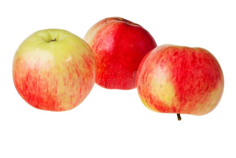 Frische rote und grüne Äpfel. stockfoto