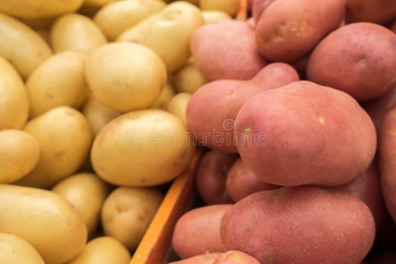 Frische rote und weiße Frühkartoffeln am Markt lizenzfreie stockbilder