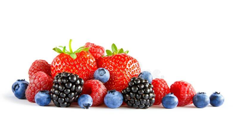 Frische süße Beeren auf dem weißen Hintergrund Reife saftige Erdbeere, Himbeere, Blaubeere, Blackberry lizenzfreies stockbild